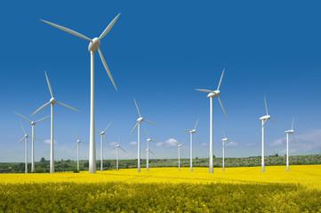 Windkrafträder in einem Rapsfeld