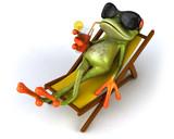 Fototapety Grenouille et chaise longue