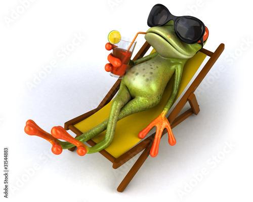 Grenouille et chaise longue