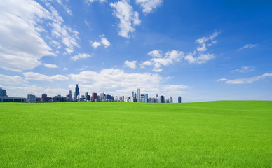 Green grass and  downtown