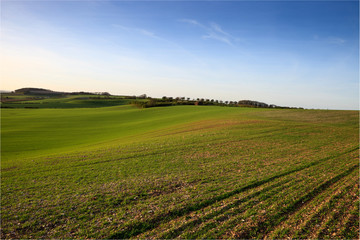 rural landscape of fields