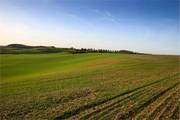 rural landscape of fields