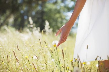 Woman walking through field