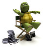 tortoise in a directors chair
