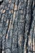gros plan sur lave cordée, Piton de la Fournaise, île Réunion