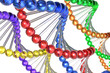 Color DNA molecules