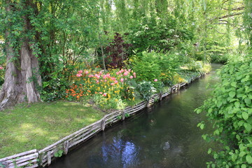 river in the garden