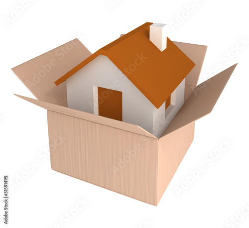 House in cardboard container