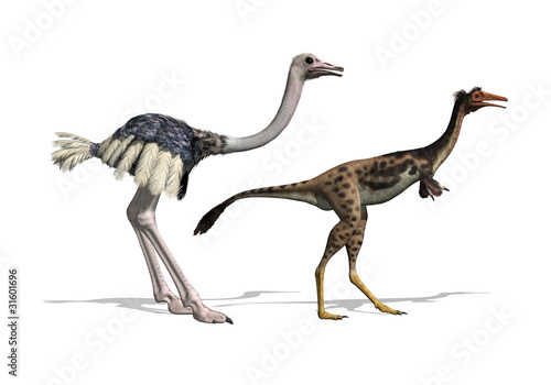 Ostrich and Mononykus Dinosaur Comparision - 3d render