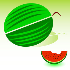 watermelon art illustration