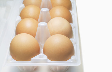Fresh eggs in plastic egg box.