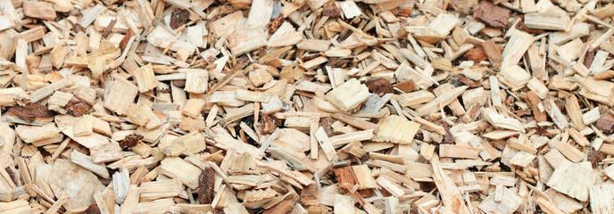 Schegge di legno