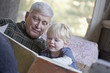 Grandfather and grandchild reading