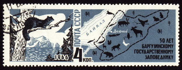 50-year anniversary of Barguzinsky reserve on post stamp
