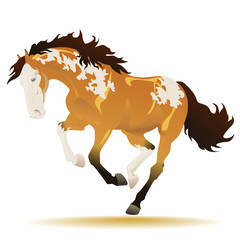 Vector running paint horse on white