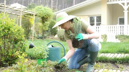 Senior woman gardening in private home