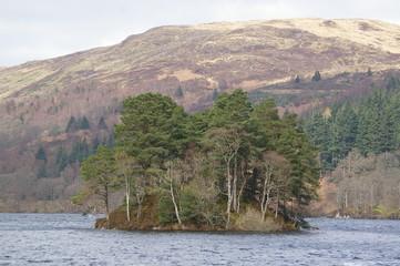An island on Loch Katrine. The Trossachs, Scotland