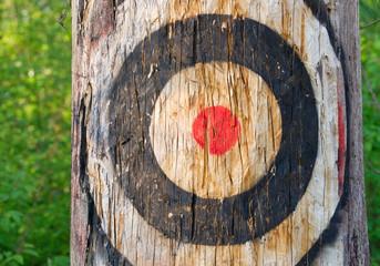 Zielscheibe am Baum - Our Target - Concept