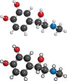 Adrenaline (adrenalin) molecule poster
