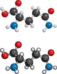 Glutamine molecule
