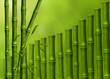 Экзотический фон из стеблей бамбука