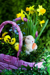 Easter compositions with flowers and animals