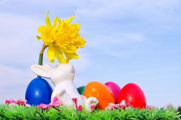 Osterhase auf Blumenwiese - easter bunny on flower meadow 03