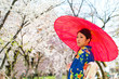 japanese kimono woman with red traditional umbrella