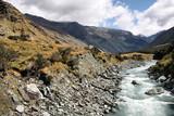 New Zealand landscape - Mount Aspiring National Park poster