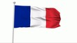 Fahne Frankreich NTSC