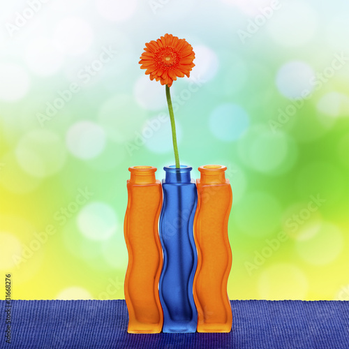 Orange gerbera flower in vase on spring background