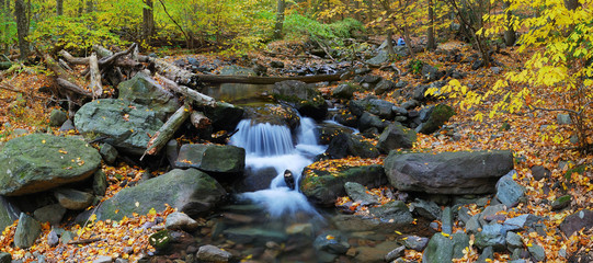 Autumn creek panorama and foliage