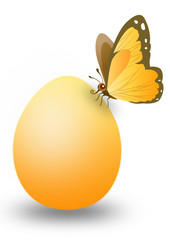 yellow egg with butterfly