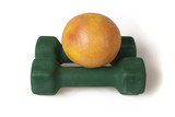 Grapefruit on dumbbells