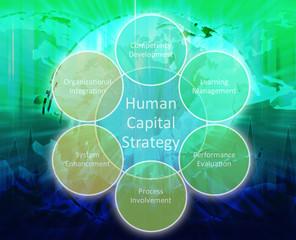 Human capital business diagram