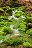 Fototapety Mountain stream, mossy stones