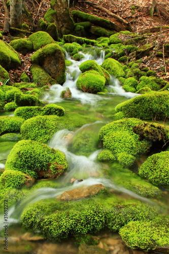 gorski-potok-omszale-kamienie