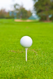 Golf ball on tee over a blurred green.
