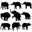 Vector illustration of Elephant silhouettes on white background.