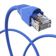 Blue network cable - dynamic