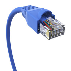 Blue network cable - closeup view