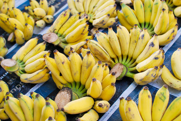 Bunch of fresh banana in market