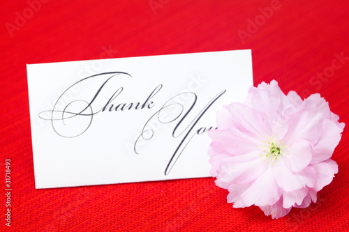 sakura flower and a card signed thank you on a red background
