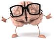 Cerveau et lunettes