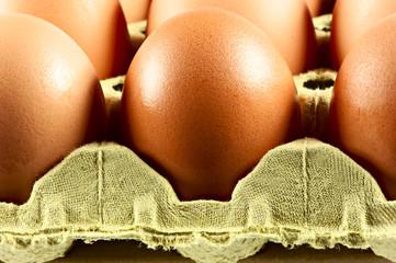 Eier im Karton, Makro