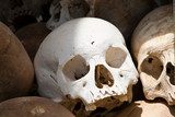 White skull from a mass grave of Khmer Rouge victims