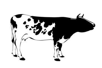 black and white silhouette of cow