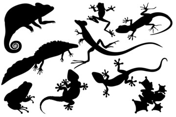reptiles and amphibians black silhouettes set