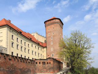 Tower of Wawel