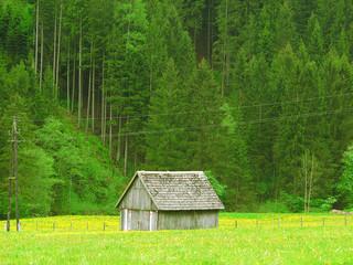 Амбар на альпийском лугу. Австрия